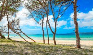 a picture of maria pia beach near alghero in north west sardinia